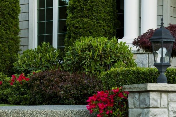 Commercial landscaping services by Crawford Landscaping in Marietta GA